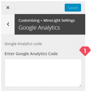 12-customizer-minelight-settings-google-analytics