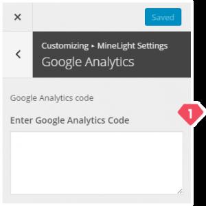 12-customizer-minelight-settings-google-analytics